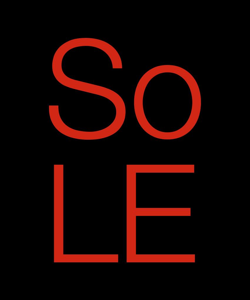Solecicm_03