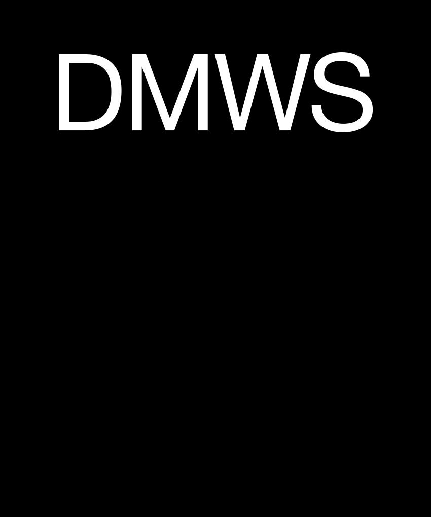 DMWS_02